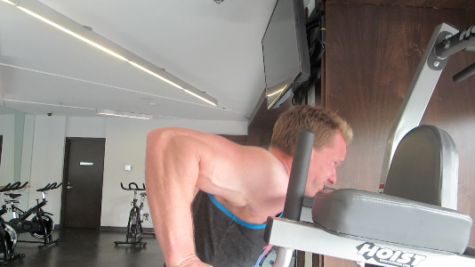 parallel bar dips