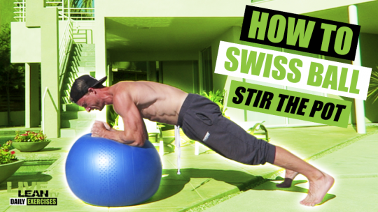 How To Do A SWISS BALL STIR THE POT   Exercise Demonstration Video and Guide