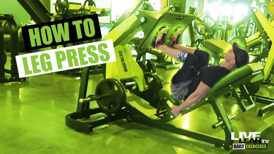How To Do A LEG PRESS | Exercise Demonstration Video and Guide