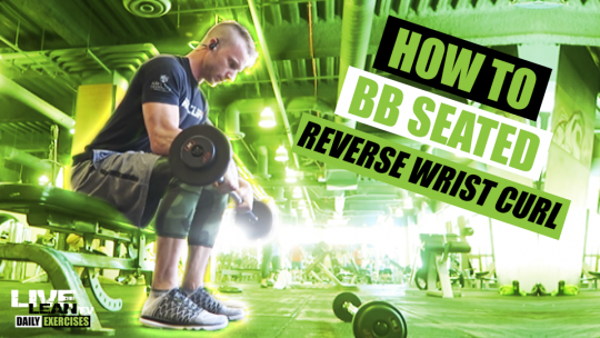 How To Do A BARBELL SEATED REVERSE WRIST CURL | Exercise Demonstration Video and Guide