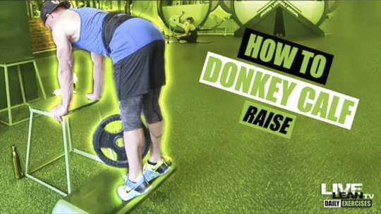How To Do A DONKEY CALF RAISE   Exercise Demonstration Video and Guide