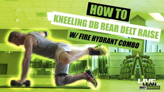 How To Do A KNEELING DUMBBELL REAR DELT RAISE WITH FIRE HYDRANT COMBO | Exercise Demo Vid