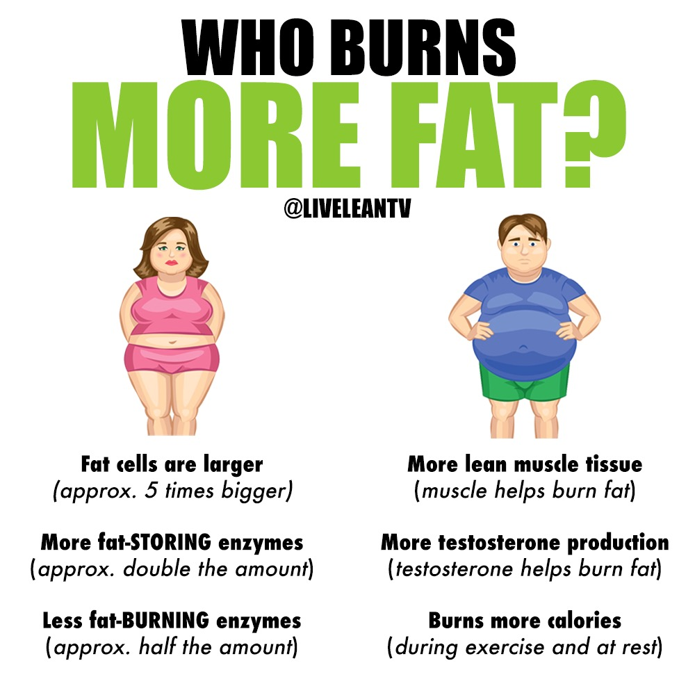Who Burns Fat Easier: Men or Women?