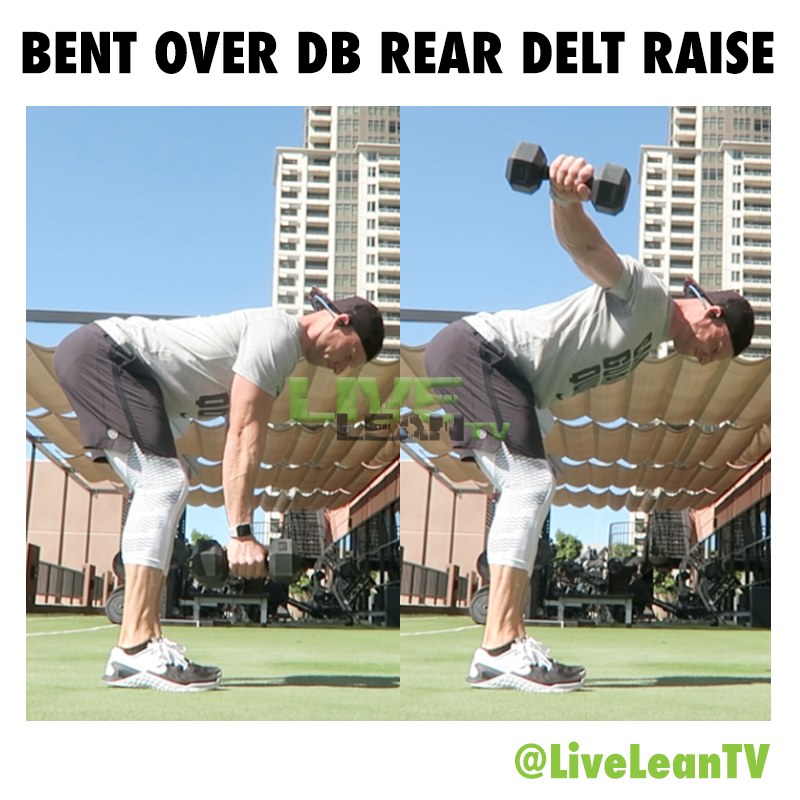 BENT OVER Dumbbell REAR DELT RAISE