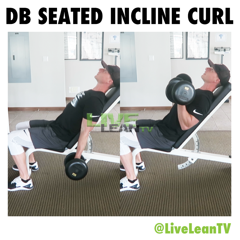 Dumbell SEATED INCLINE CURL