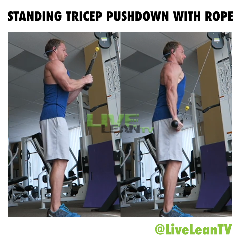 Standing Tricep pushdown with rope