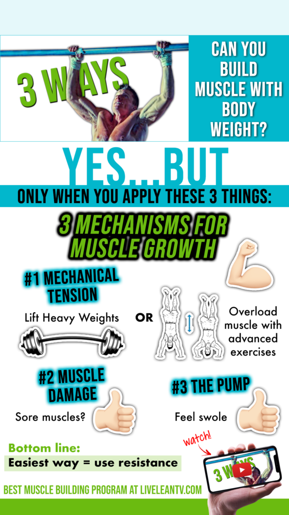 Can You Build Muscle Without Weights?